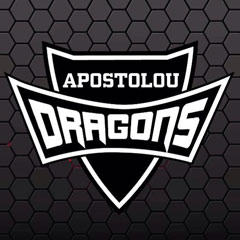 DRAGONS FIGHT ACADEMY